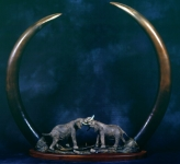 Fighting Bulls With Bronze Tusks
